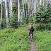 The aspen groves lend an added measure of scenery to the ride.  It's all premium single track and we owe a debt of gratitude to the mining industry for its existence.