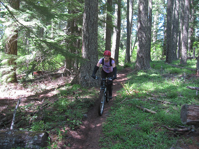 Alpine Trail Part 2, Westfir OR - 5/31/2014
