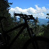 There are several outside corners that offer good views of the Oregon landscape.  Otherwise the woods are quite dense.  I should have had clear glasses for today's ride.  My sunglasses were a little too dark for the shaded sections.