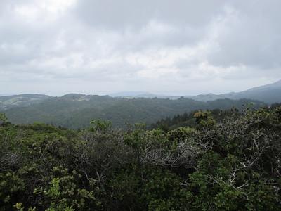 Bolinas Ridge May 2011