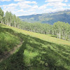 Once through the glade the trail opens up into open meadow.  Although not visible, the route cuts right and passes in front of a clump of aspen trees (mid right frame).  This section is the steepest part and rear braking will almost certainly result in skidding.