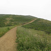 Climbing Fox Trail