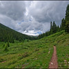 Colorado Trail from Copper to Searle Pass - July 2010