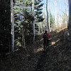 Jeannie and I head into the Nate Creek Trail.  This is off 550 heading up CR8 and CR10 for about 10 miles on your left.  We enjoy beautiful late fall weather.  Some sections of this trail are slightly muddy today.  It doesn't detract from our ride, however.