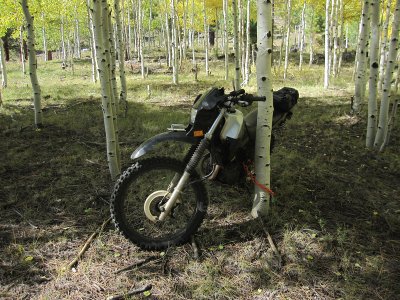 We dump a bike in the woods to shuttle one person back to the top.  This system has worked great for those downhill ride situations.