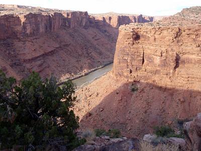 Colorado River from Porcupine Rim Singletrack