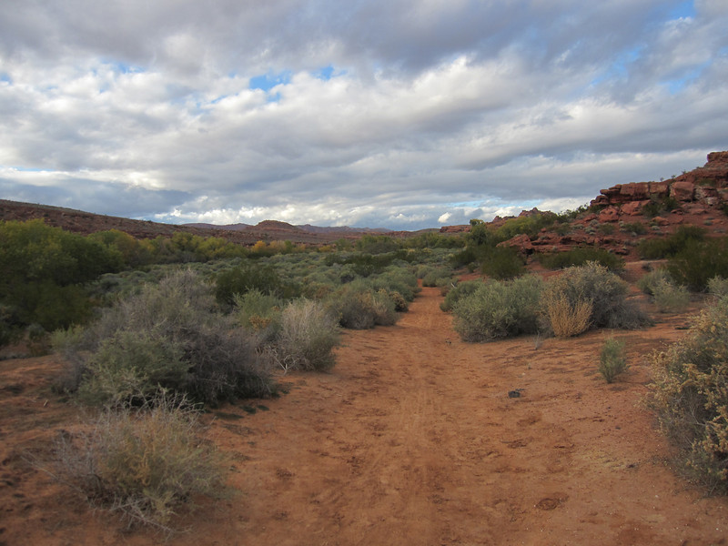 Today we explore the Turtle Wall Trail which is a local trail just outside Santa Clara on Beehive 18.  We can get to the trail head in ten minutes or less.  Shown here is entering the desert rim area that parallels Snow Canyon.