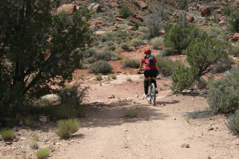 Moving forward hoping to access the famed Slick Rock Swamp Trail.  It's hot but not unpleasant as a good breeze blows.
