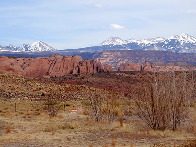 View of La Sals from Sand Flats Road