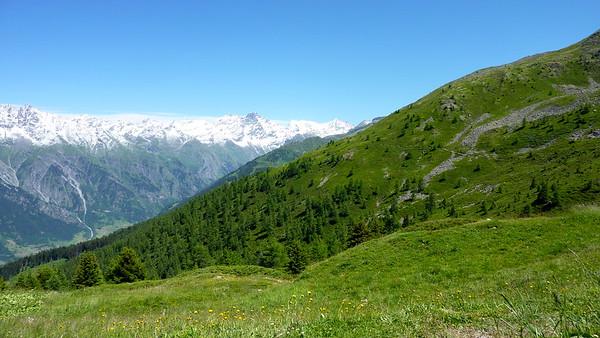 Trail 2000m