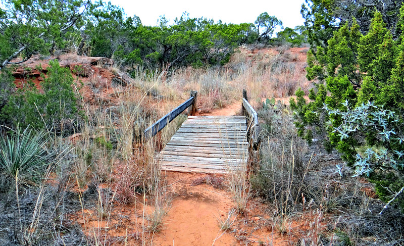 Foot bridge along the trail.