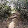 A lot of steps are encountered along this trail.