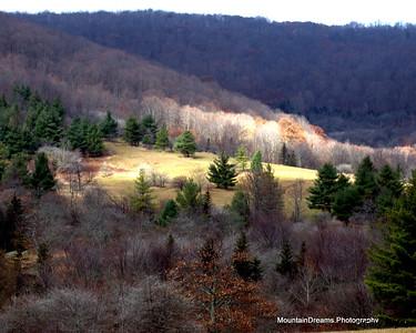 Elk Hollow Ridge, Roaring Creek Road,  NC