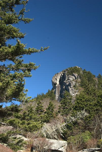 On Grandfather Mountain