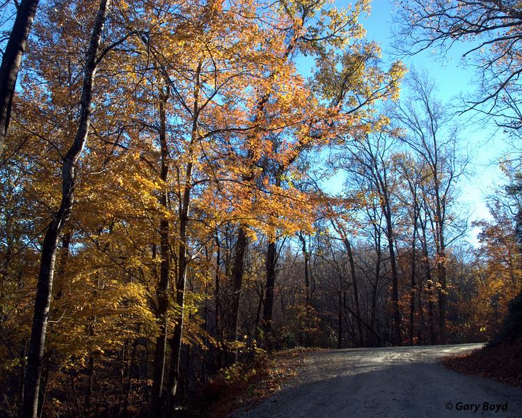 Fall on the Blue Ridge