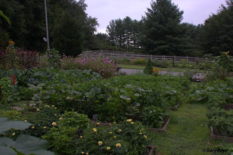 The Garden -  Mast Farm Inn