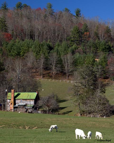 Dutch Creek Farmhouse<br /> Valle Crucis, NC