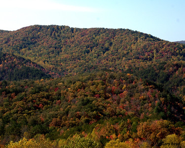Boyd Gap View - Fall