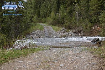 Bear Creek is high and a foot deep running across the road at 21km, just past the Bear Lake turnoff.  Fordable, but watch for a log under there on the right side. June 1 by RN