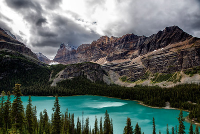 Lake O'Hara Vista