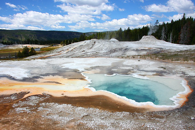 Geyser, Yellowstone NP