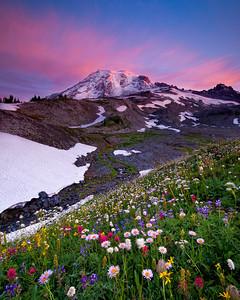 Mount Rainier I