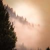 Rolling Mountain Mist
