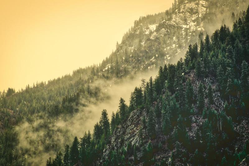 Vintage Mists