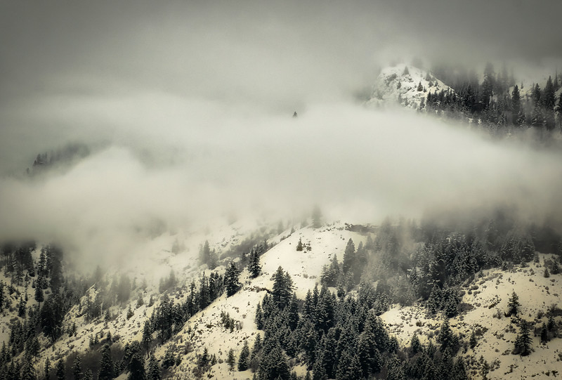 Winter Mountain Mist