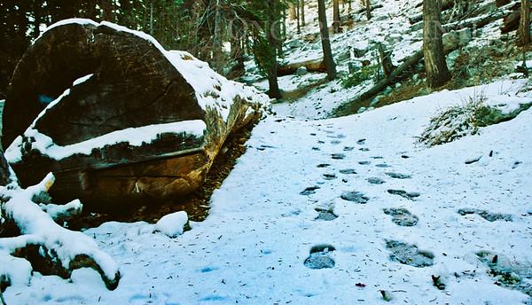 Whitney Portal, Mt. Whitney, California