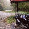 Misty Georgia Road
