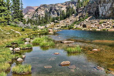 Pond On Beartooth Plateau, Montana