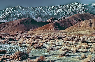 Owens Valley Scene, CA