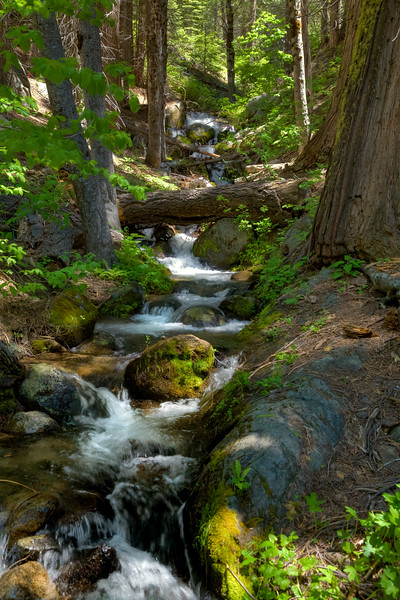 Creek in Yosemite