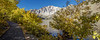 Convict Lake Fall Panorama