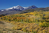 Highway 395 Fall Color