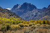 June Lake Loop Fall Color