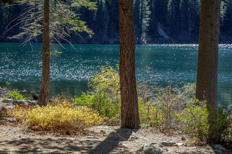 Lower Sardine Lake Sparkle