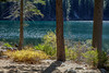 Lower Sardine Lake Sparkle