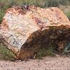 Log Rock