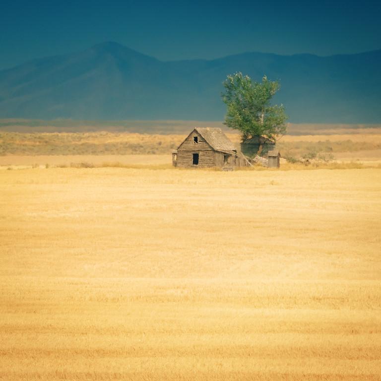 homesteaders home