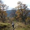Cullardoch - Oct-11 - 010