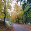 Cullardoch - Oct-13 - 002