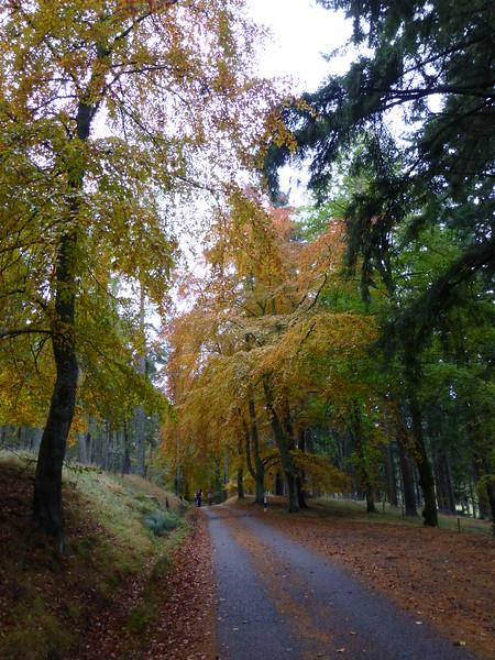 Cullardoch - Oct-13 - 003