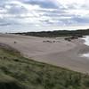 Sands of Forvie - Oct-14 - 020