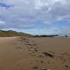 Sands of Forvie - Oct-14 - 028