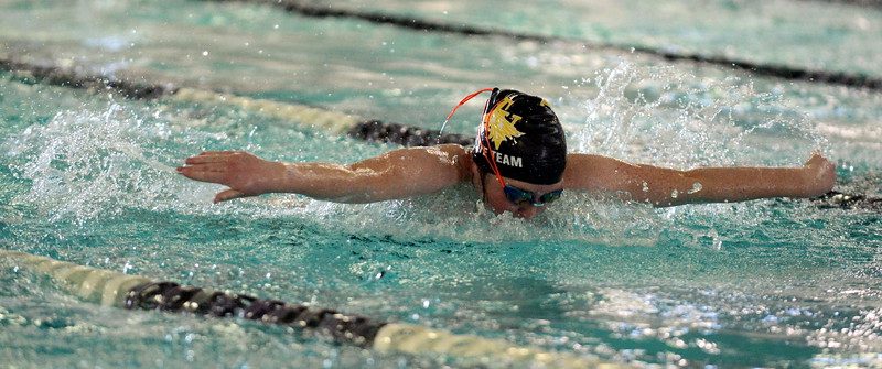 Thompson Valley's Arden McCauley wims the butterfly leg of the 200-yard medley relay at Saturday's Mountain View Invitational at the Mountain View Aquatic Center. (Mike Brohard/Loveland Reporter-Herald)