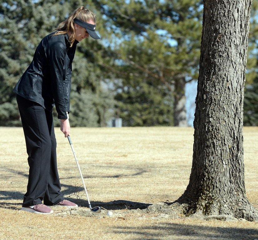 . Thompson Valley\'s Kelli McAleenen chips out of a bad spot behind a tree during Tuesday\'s round at the Mountain View league meet played at the Olde Course. (Mike Brohard/Loveland Reporter-Herald)