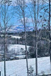 Snow Weaverville-20090302-0005