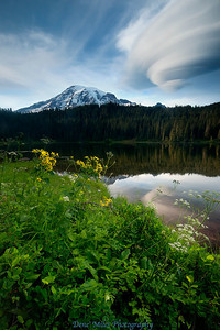 A lenticular cloud tours around Mount Rainier.  Seen from reflection lake.